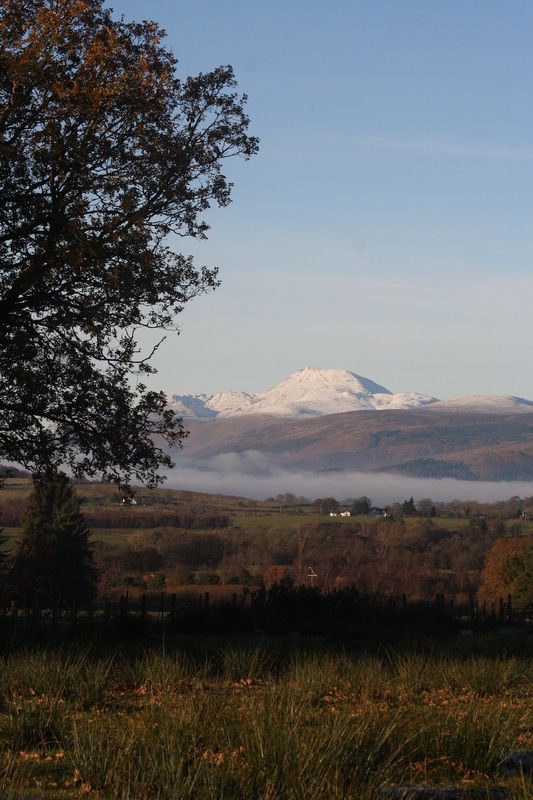 Ben Lomond on a walk from Appletree Cottage