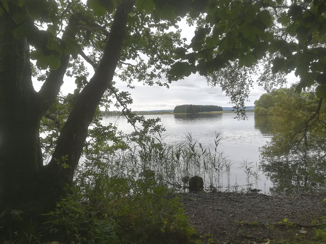 Inchtulla from Inchmahome, Lake of Menteith, Scotland