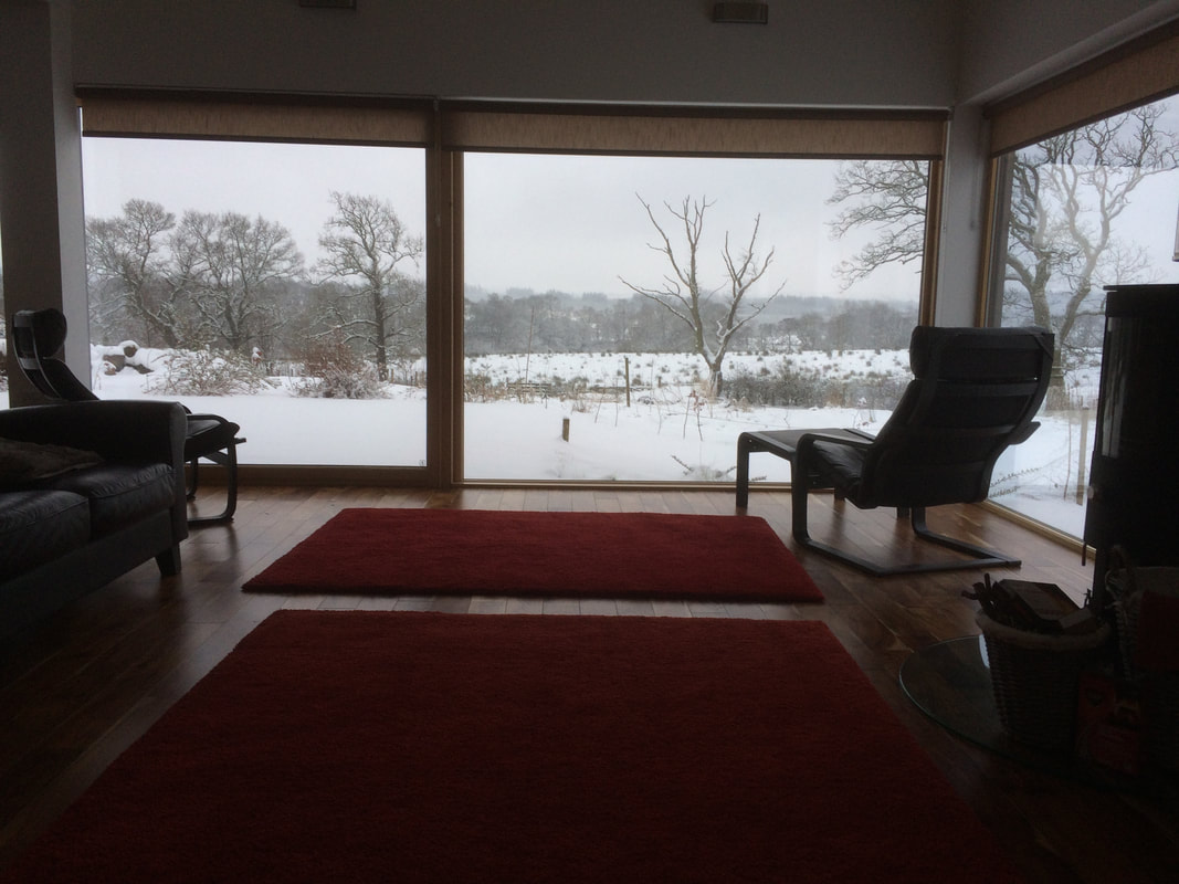 Appletree Self Catering in Loch Lomond and Trossachs National Park view of the snow